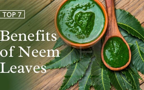 Neem Leaves for Skin | Benefits, Side Effects, & How to Use