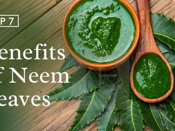 Neem Leaves for Skin   Benefits, Side Effects, & How to Use
