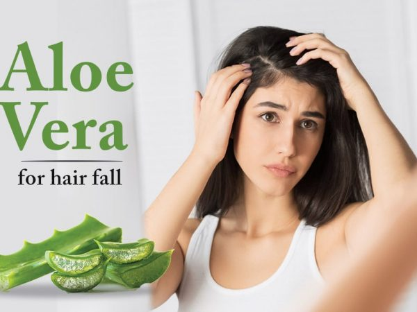 Aloe Vera for Hair Fall Control | What Are the Benefits and Drawbacks?