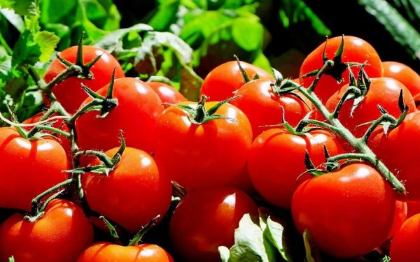 Benefits of Tomatoes for Hair, Skin and Body Health